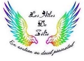 Les ailes de zelie