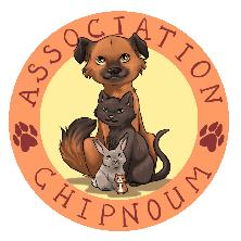 Logo Chipnoum