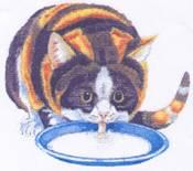 ecole-du-chat-de-valmont