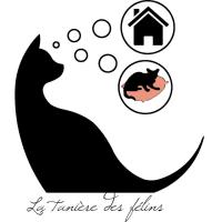 la-taniere-des-felins