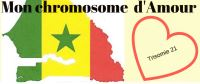 monchromosomedamour