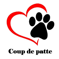 coupdepatte26