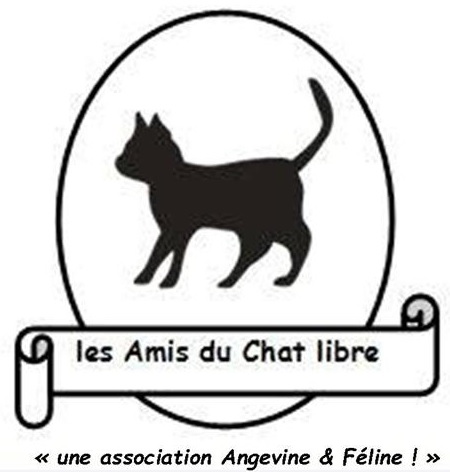 Logo Angevine et Féline 2