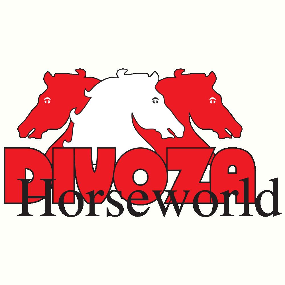 Soutenez les associations et projets qui vous tiennent à coeur avec facile2soutenir et Divoza Horseworld
