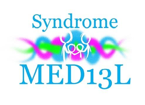 LogoMED13L-VerySmall