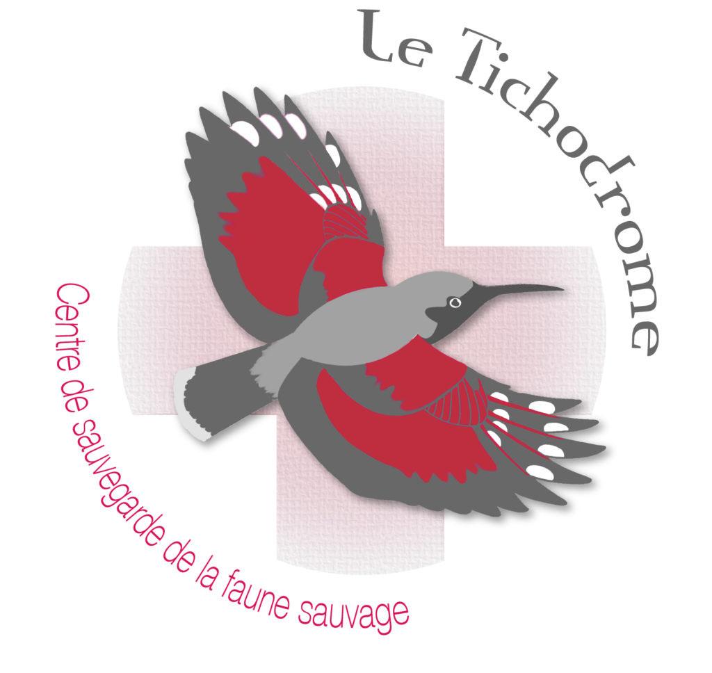 logo-nouvelle-couleur1