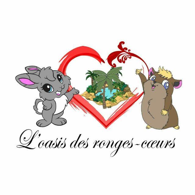 Lu2019Oasis-des-ronges-cu0153urs-20191219_102741