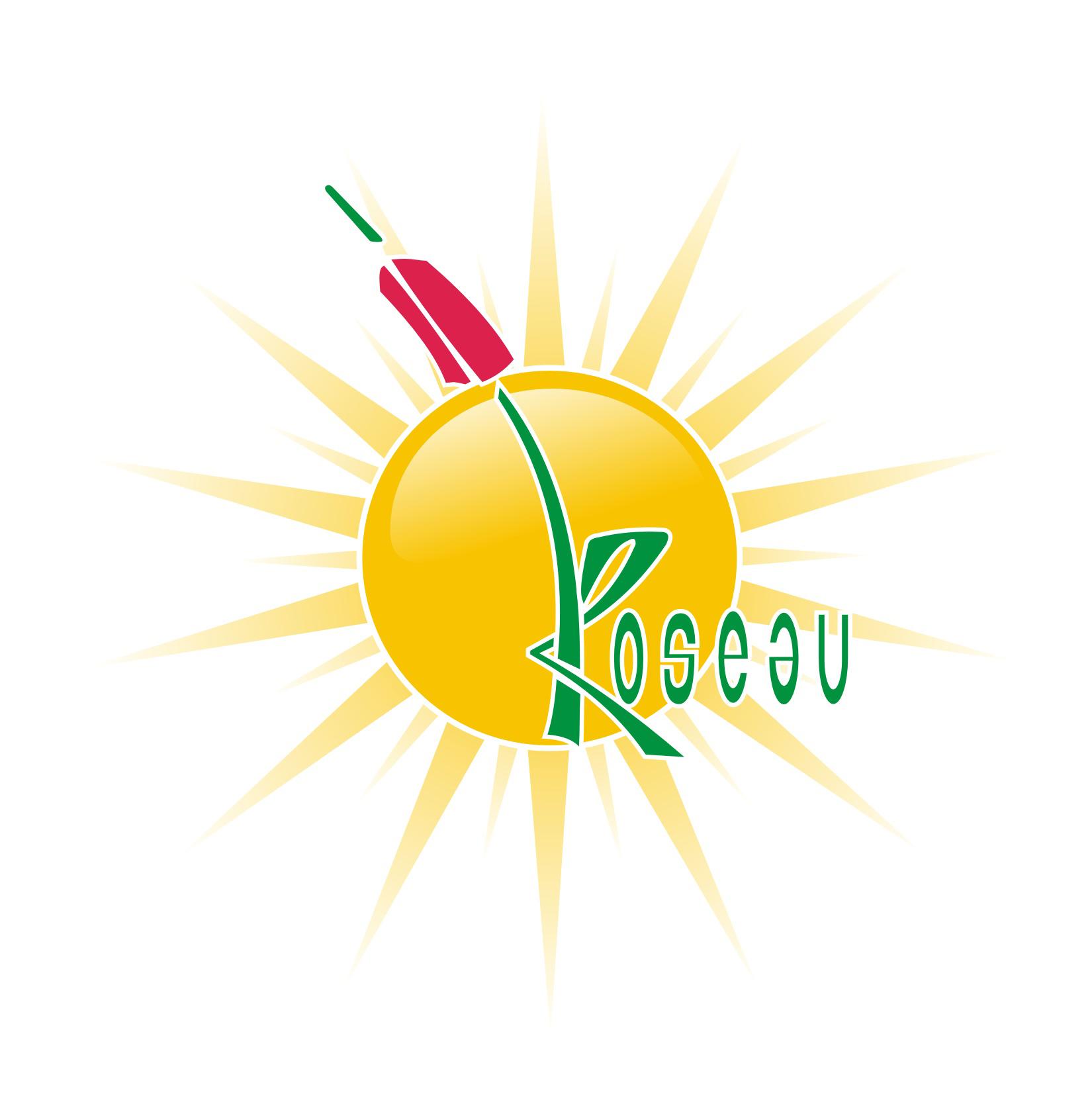 LOGO-ROSEAU-SOLEIL-SITE-INTERNET-NOV-07