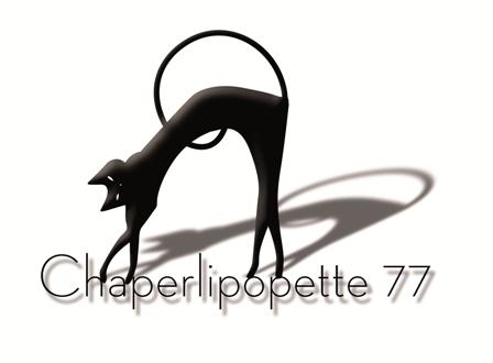 logo-Chaper-V2-2014-web-petit-Copier