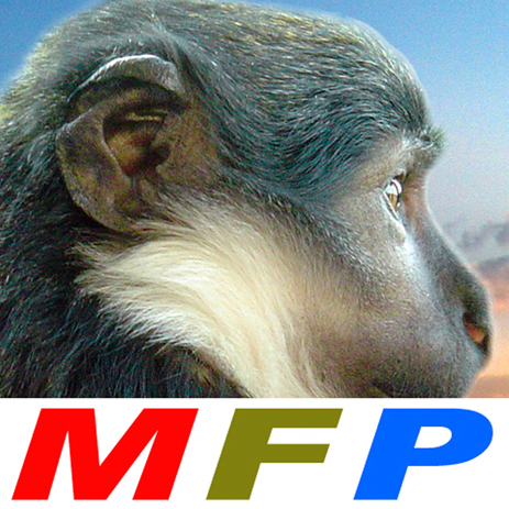 logo-MFP-2020-A2