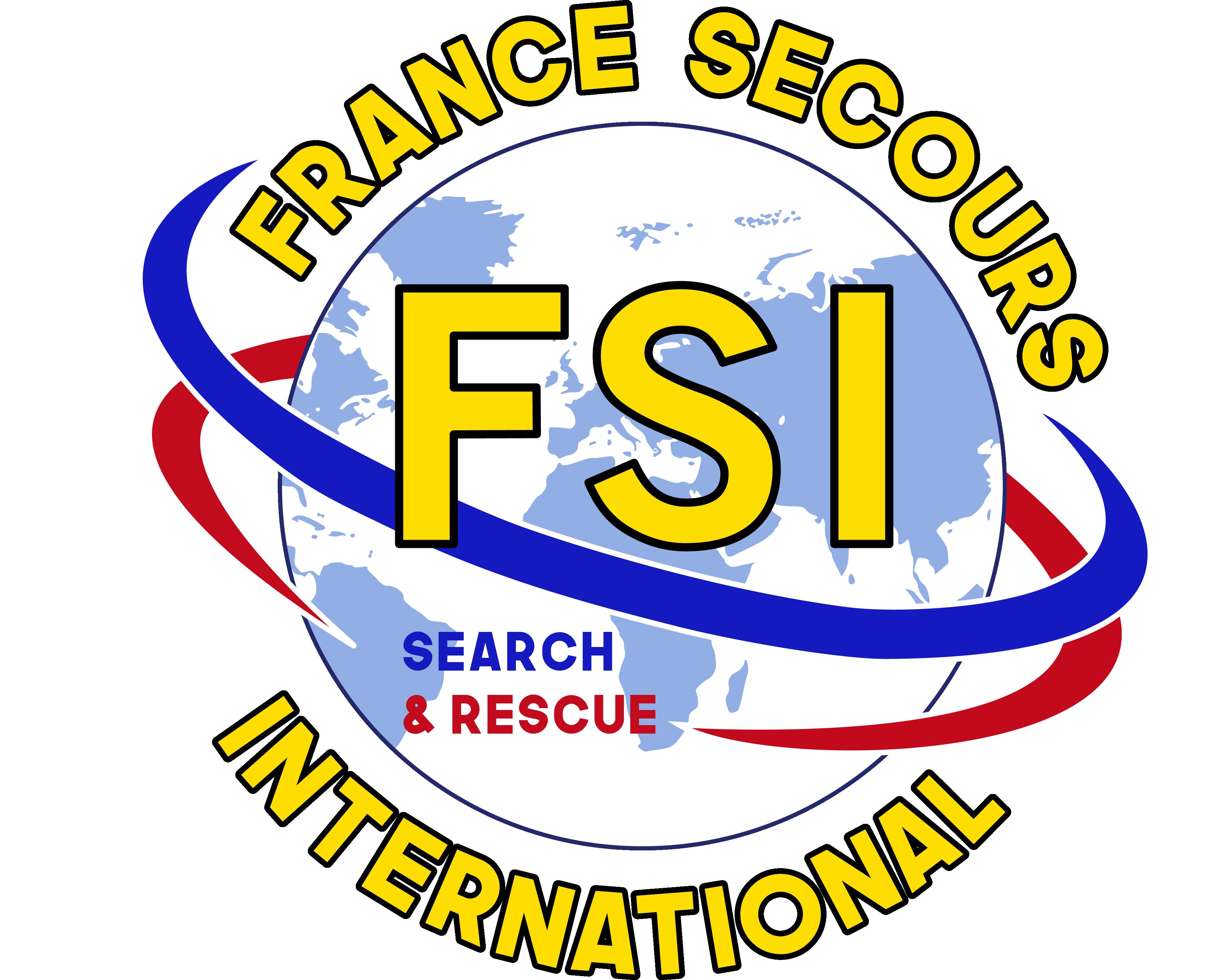 logo_FSI-2
