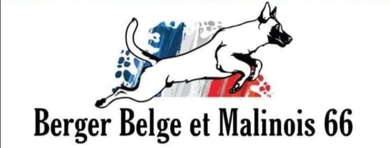 Berger-Belge