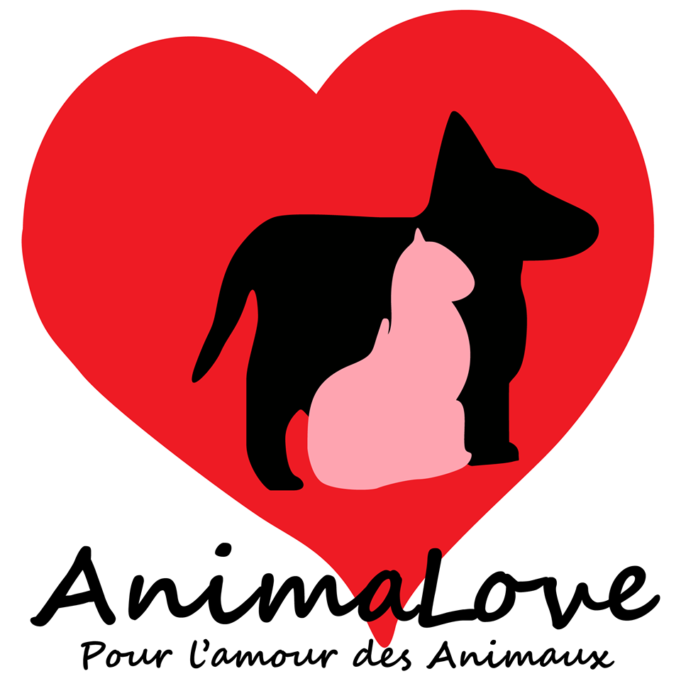 Logo-animalove