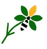 5-icone-fleur-maksika-2018-1